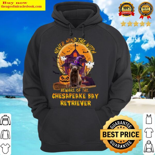 Never Mind The Witch Beware Of The Chesapeake Bay Retriever Halloween Moon Hoodie