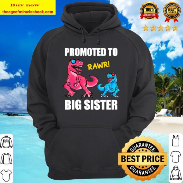 Promoted To Big Sister 2021 Outfit Dinosaur Women Girl Hoodie