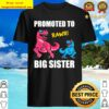 Promoted To Big Sister 2021 Outfit Dinosaur Women Girl Shirt