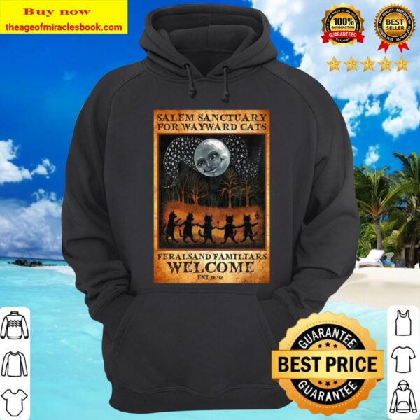 Cats ferals and familiars welcome est 1692 Salem sanctuary for wayward Hoodie