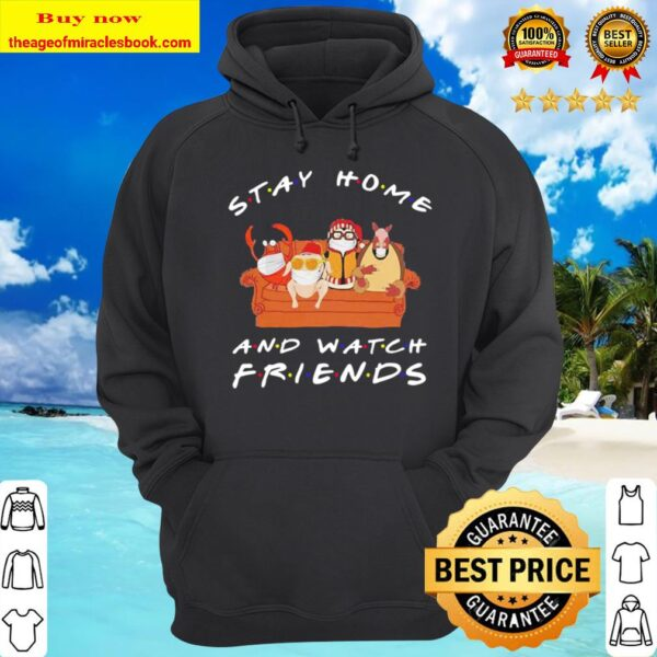 Hugsy Stay home and watch friends Hoodie