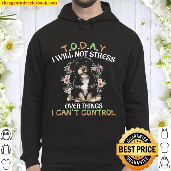 Havanese Today I Will Not Stress Over Things I Can_t Control Hoodie