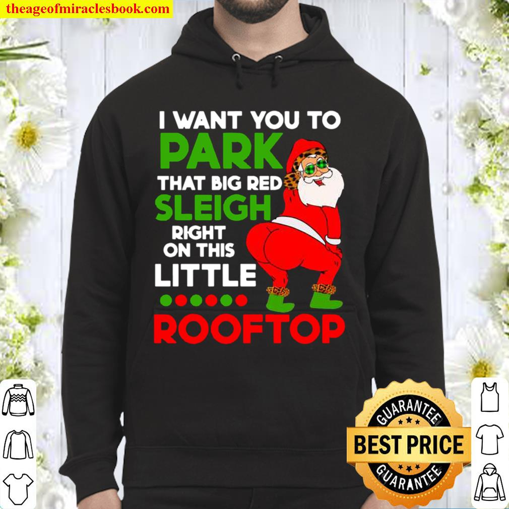 I Want You To Park That Big Red Sleigh Right On This Little Rooftop Ch Hoodie